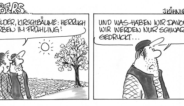 Cartoon: Grabers Farben